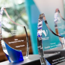 DSR-Annual-Report-Awards